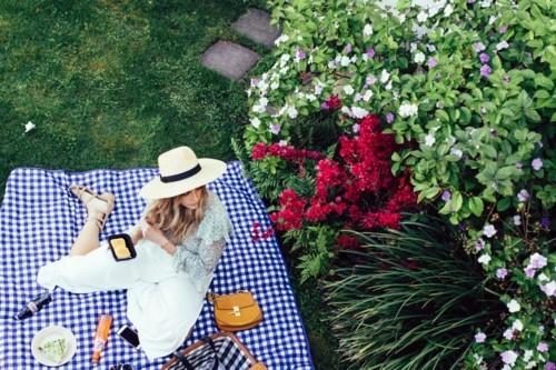 picknick ideen ein großer gebüsch