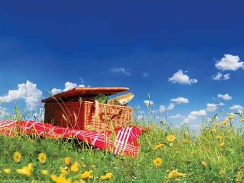 picknick ideen korb und tischdecke