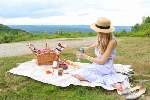 picknick ideen mit einer schönen aussicht