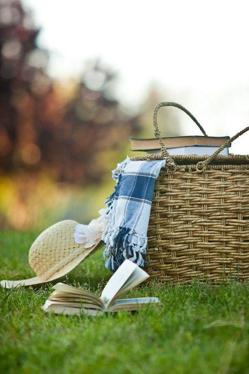 tolle korbidee picknick ideen