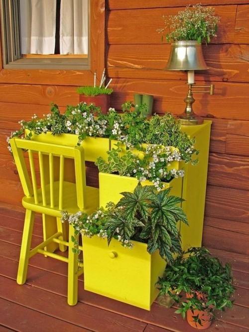 topfblumen alter arbeitstisch gelb frisch
