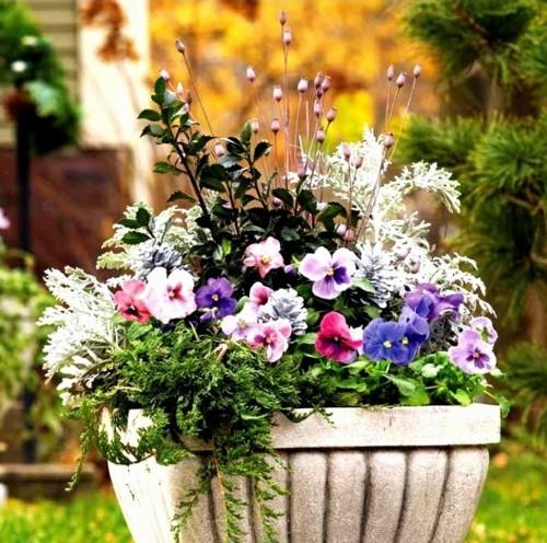 Winter Flower Pot Ideas xcLkv Fresh Winter Flower Planter Pots Container Gardening Growing Flowers In