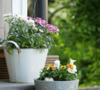 Gartengestaltung Ideen mit Topfblumen machen den Garten zu einer Wohlfühloase