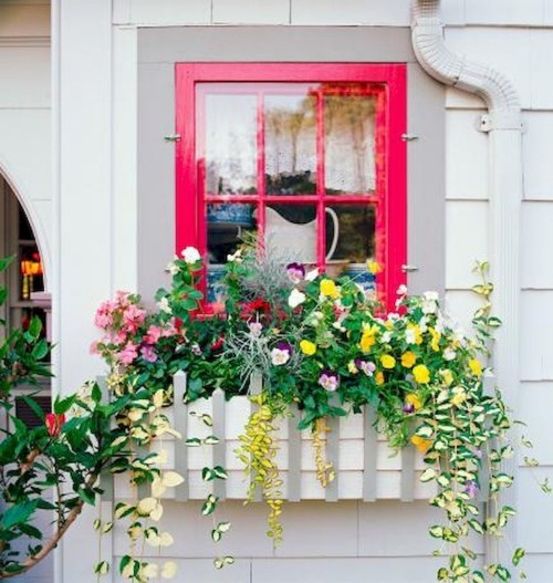 topfblumen fensterbank dekorieren ideen