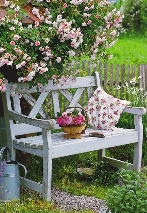 topfblumen gartenbank gartenpflanzen