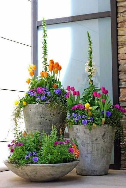 topfblumen große pfanzenbehälter betonoptik