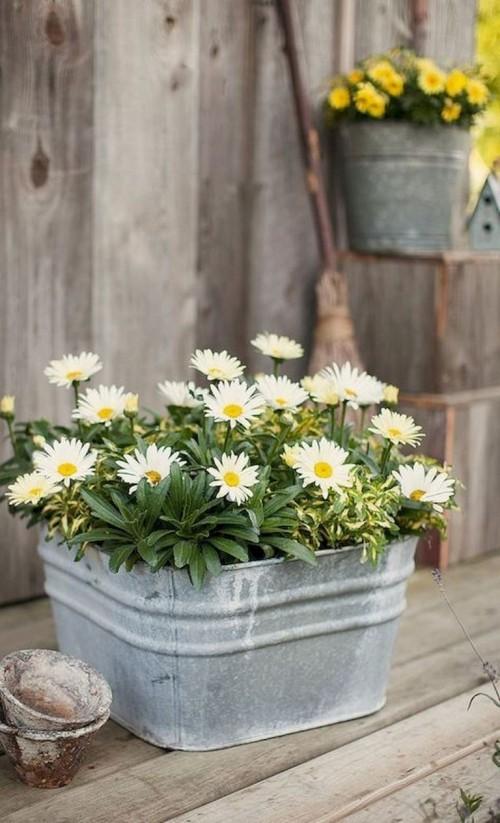 topfblumen rustikaler pflanzebehälter gartendeko ideen