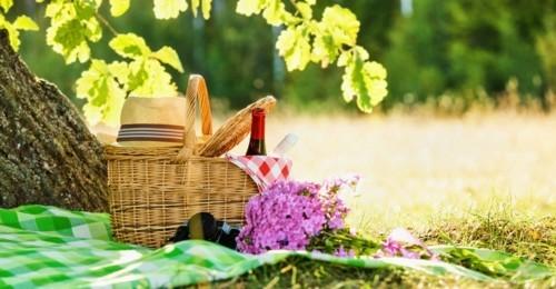 unter dem schatten picknick ideen