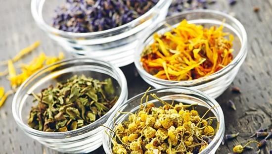 Getrocknete Kräuter in Glasschalen Heilung aus der Natur