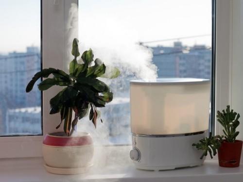 Luftbefeuchter verbreitet Dampf im Wohnzimmer