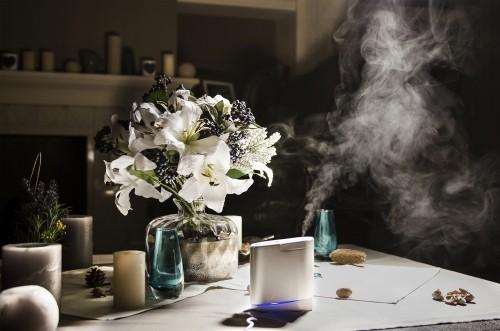 Luftbefeuchter zu Hause neben Blumenstrauß häusliches Interieur
