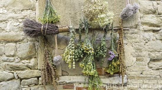 Lufttrocknung populäre Methode Kräuter trocknen