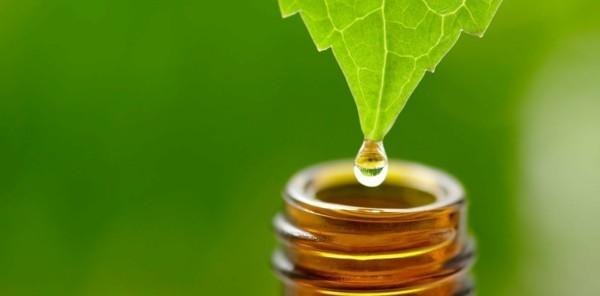 Natürliches Sonnenöl selber machen natur