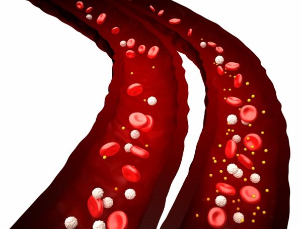 besenreiser entfernen koriandersamen gesunde beine durchbluetung