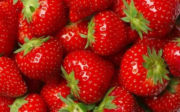 dehydrieren vermeiden rhabarber limonade selber machen erdbeeren