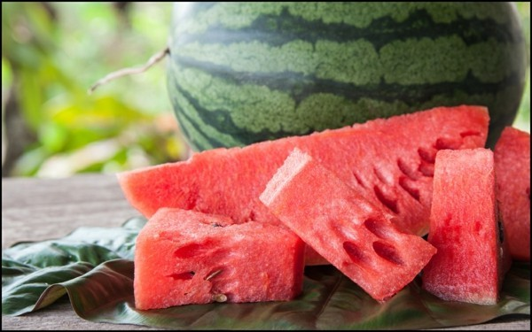 dehydrieren vermeiden rhabarber limonade selber machen wassermelone