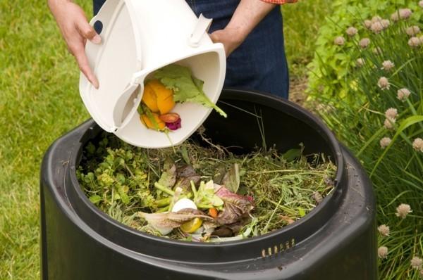 elsternest im garten elster vertreiben kompost deckel