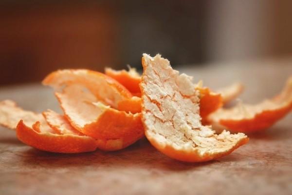 hausmittel gegen silberfische orangenschale