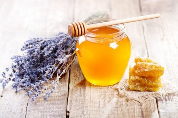 honig lavendelsirup selber machen