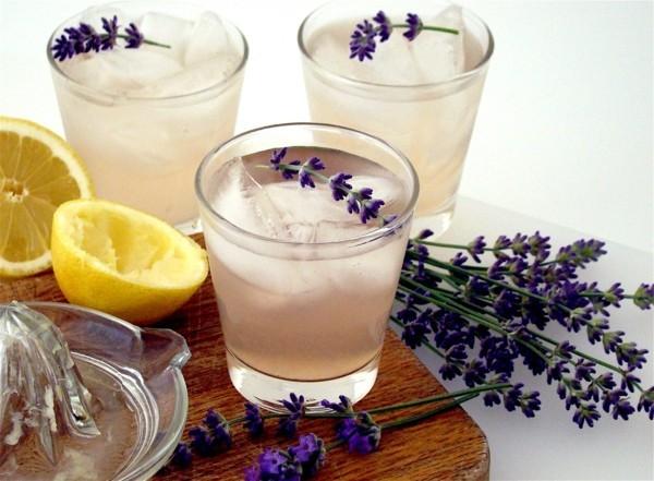 lavendelsirup rezept sommer