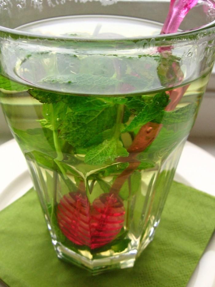 limonade ideen grün und rot
