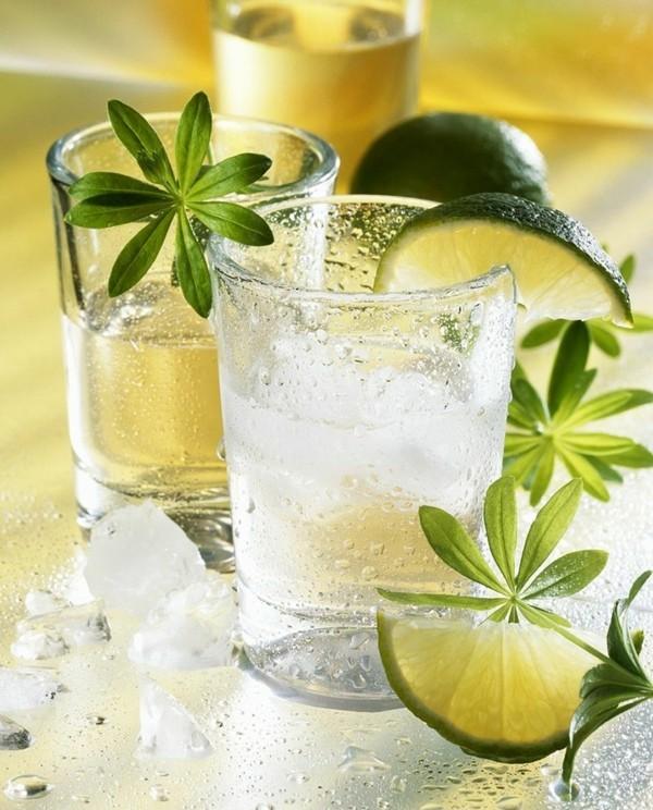 waldmeister rezepte limonade selber machen likeur rezept