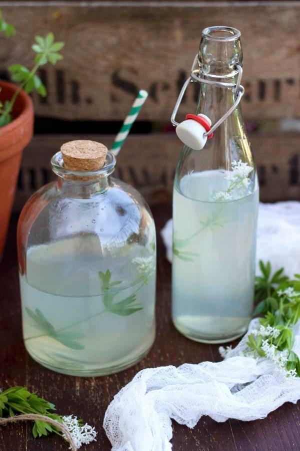 waldmeister rezepte limonade selber machen