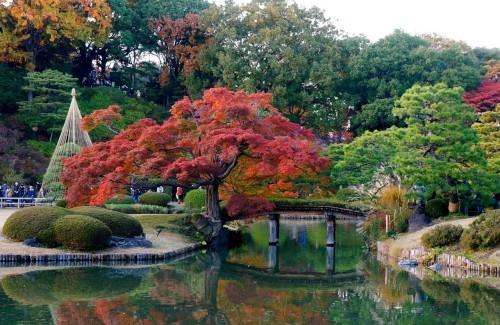 Blicke an in Rikugien Park, Tokio
