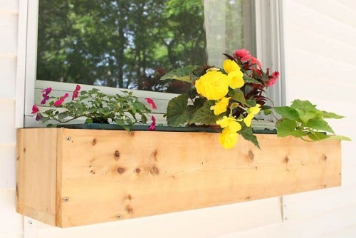 Blumenkasten am Fensterbrett gute Deko Idee