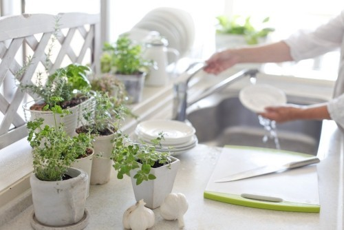 Geburtstagsgeschenke für Mama Kräutergarten in der Küche passende Geschenkeidee