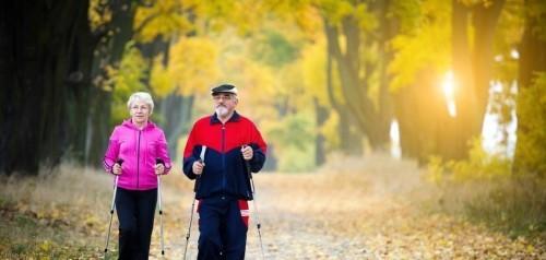 Im Wald spazieren gehen aktiv bleiben goldene Regeln für gesundes langes Leben