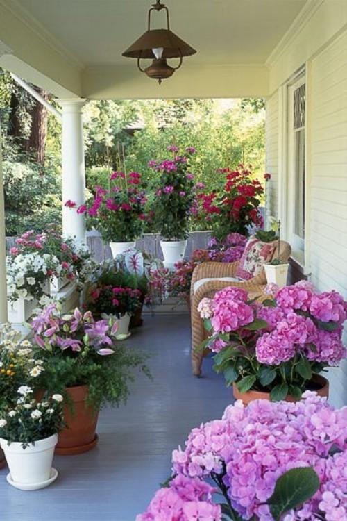 Kleine überdachte Veranda ein Blumenmeer Hortensien andere farbenfrohe Blumen