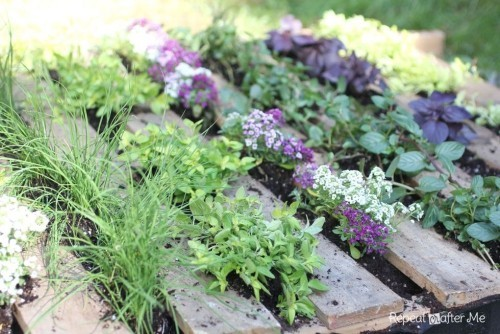 Kleinen Garten Blumen anpflanzen überall