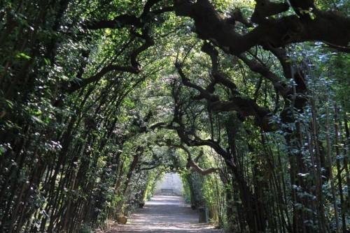 Schönste Orte für Picknick mitten in der Natur Boboli Gärten Florenz