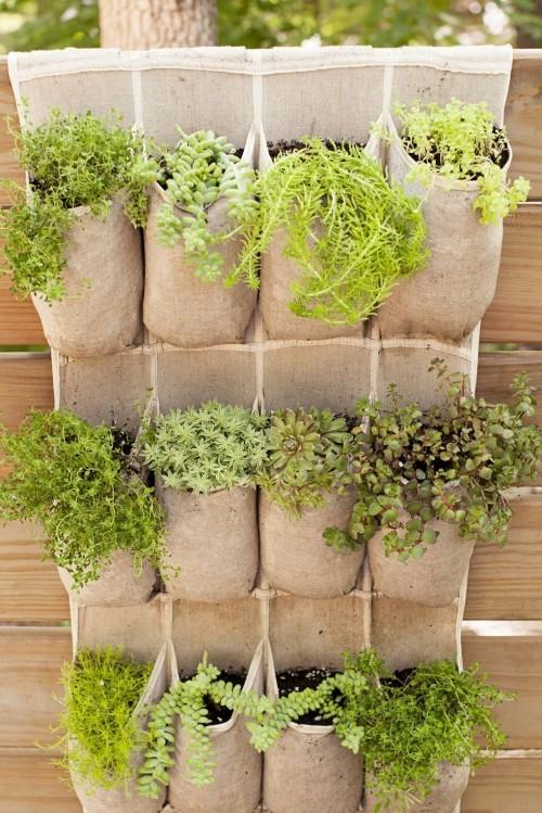 Vertikalen kleinen Garten gestalten