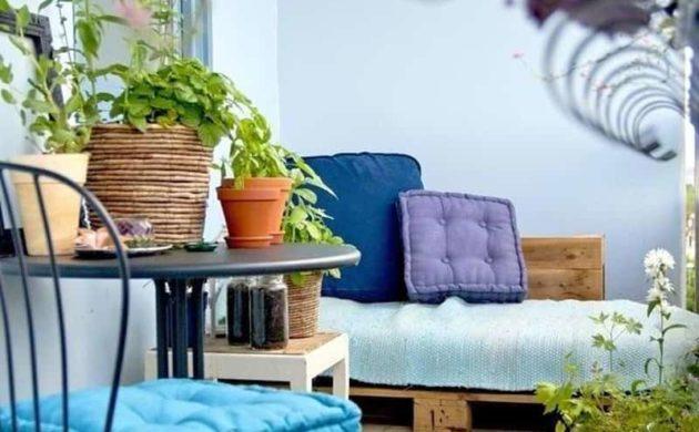 Ber 1000 balkonpflanzen gartenpflanzen zimmerpflanzen - Zimmerpflanzen gestaltungsideen ...
