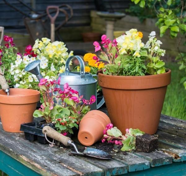 blumenkübel bepflanzen richtig