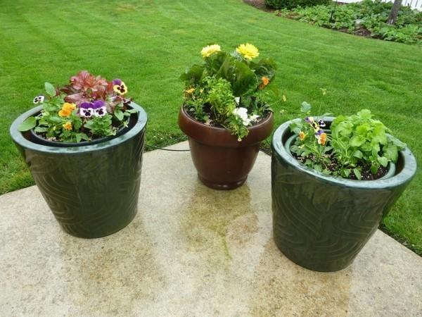blumenkübel bepflanzen terrassengestaltung