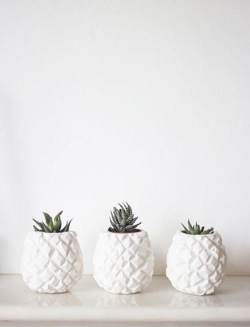 drei weiße Keramiktöpfe mit Sukkulenten schöne Geschenkidee für Mutti