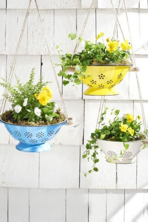 farbenfrohe Stiefmütterchen in Szene setzen kleinen Garten aufpeppen