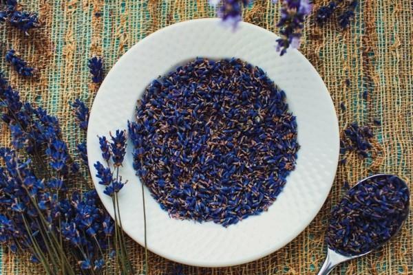 kraeuter trocknen rosmarin trocknen lavendel trocknen und aufbewahren