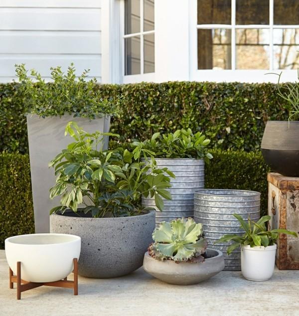 pflanzkübel modernes design terrasse