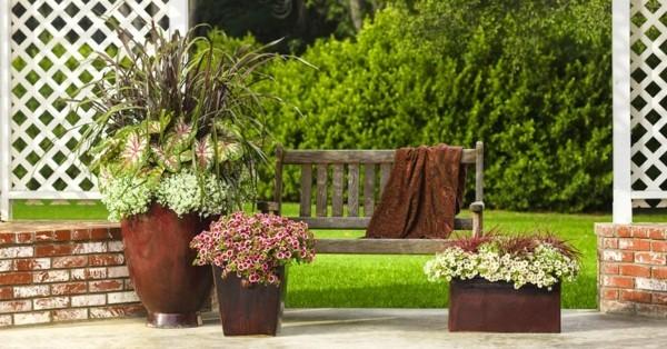rostoptik pflanzkübel auf der terrasse