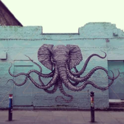 street art lustiger elefant