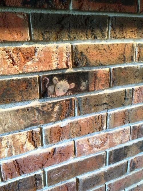 street art maus an den ziegeln