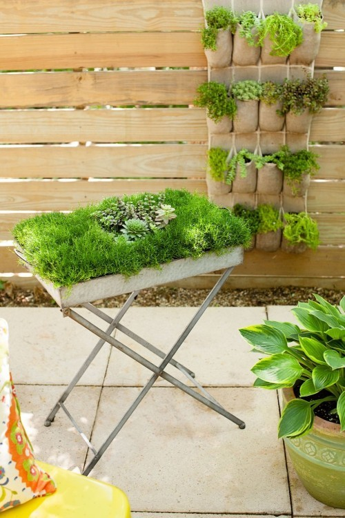vertikaler Garten Ständer mit Kräutern