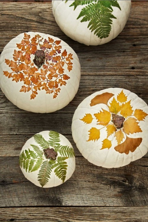 Herbstdeko basteln Kürbisse mit Blättern