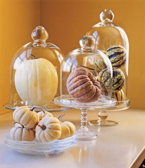 Herbstdeko basteln Zierkürbisse schmücken den Tisch auch unter Glas