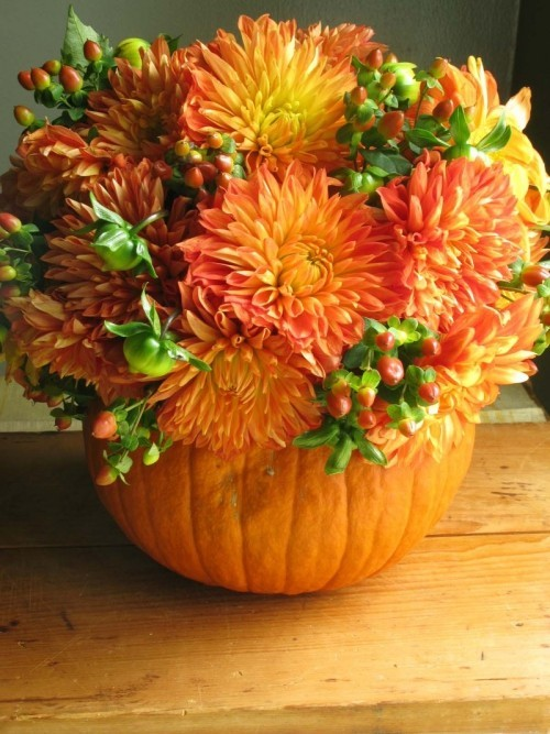 Schönes Arrangement alles in Orange Dahlien Kürbis Blumentopf