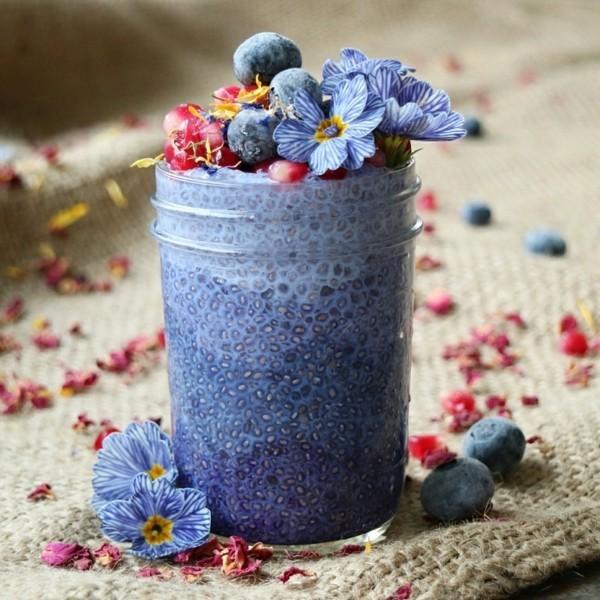 chia pudding blaues getränk